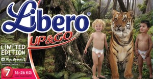 libero package 300x155 Graphic design   part 1